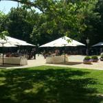 Villa Mondragone - Giardino