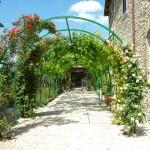 Tenuta Colfiorito - Viale fiorito