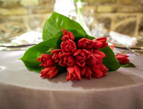 Wedding and tulips: love flower story
